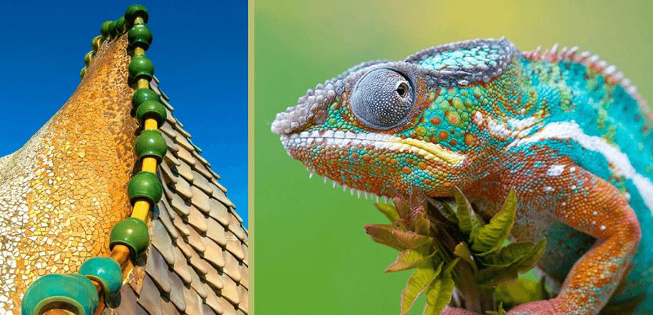 rapporto architettura e natura