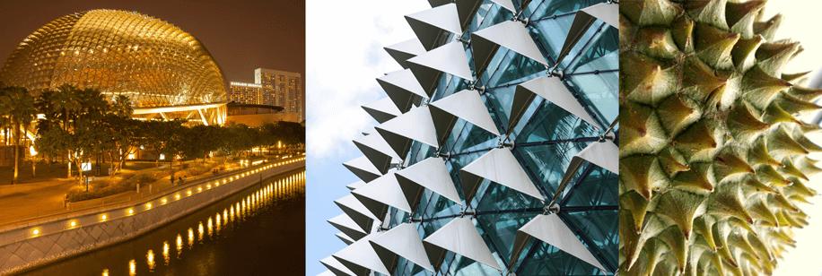 biomimentica e architettura